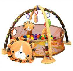 activity-gym-play-mat-Lion