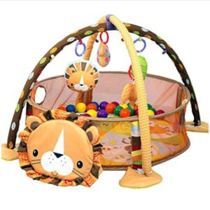 activity-gym-play-mat-Lion