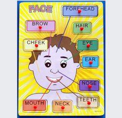 Face-Puzzle-Boy