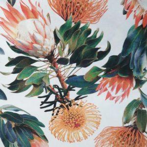 Tablecloth-Protea- Pincushion