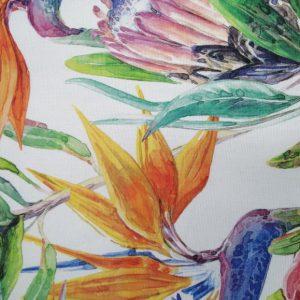 Tablecloth-Strelitzia-Protea